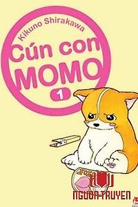 Chó Con Mo Mo - Cun Con Mo Mo