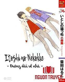 Itoshi No Nekokke - Đường Dài Về Nhà - Itoshi No Nekokke - Đuong Dai Ve Nha
