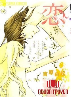 Virut Tình Yêu - Koichirakashite, Love Scatter
