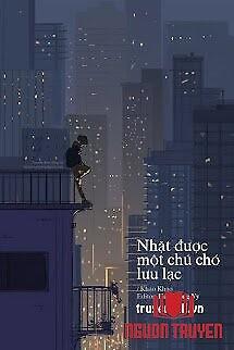 Nhặt Được Một Chú Chó Lưu Lạc - Nhat Đuoc Mot Chu Cho Luu Lac