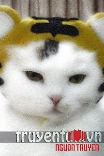 Ta Là Mèo Con Không Phải Hổ - Ta La Meo Con Khong Phai Ho